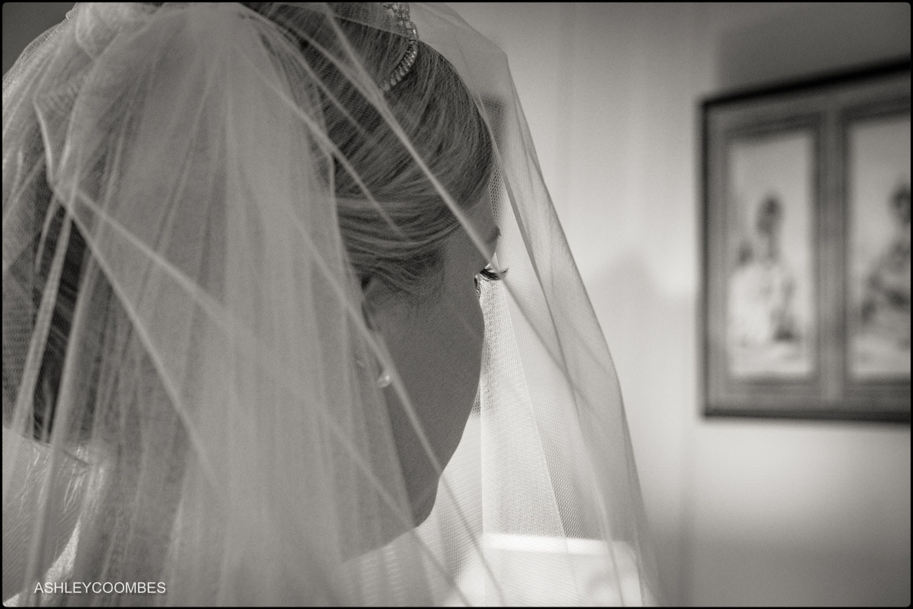 veil and eyelashes